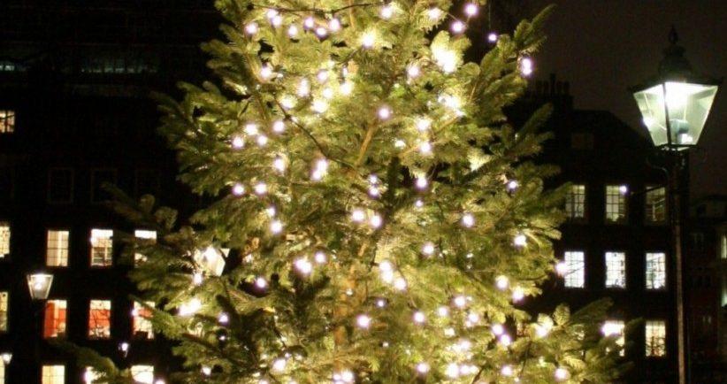 Christmas-terrace-jpg-e1411487416182